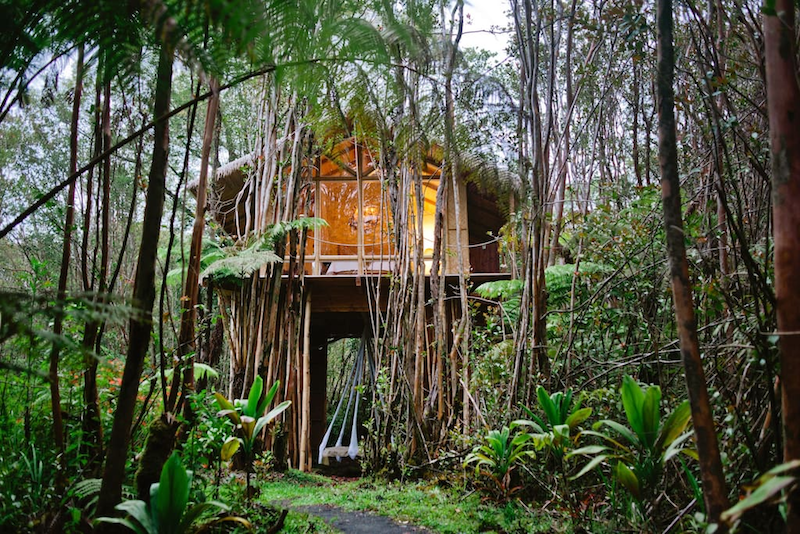 Top 10 Stunning Airbnbs for the Best Experience in Hawaii