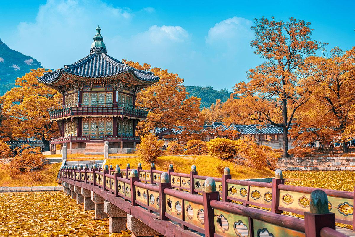 Image result for deoksugung autumn