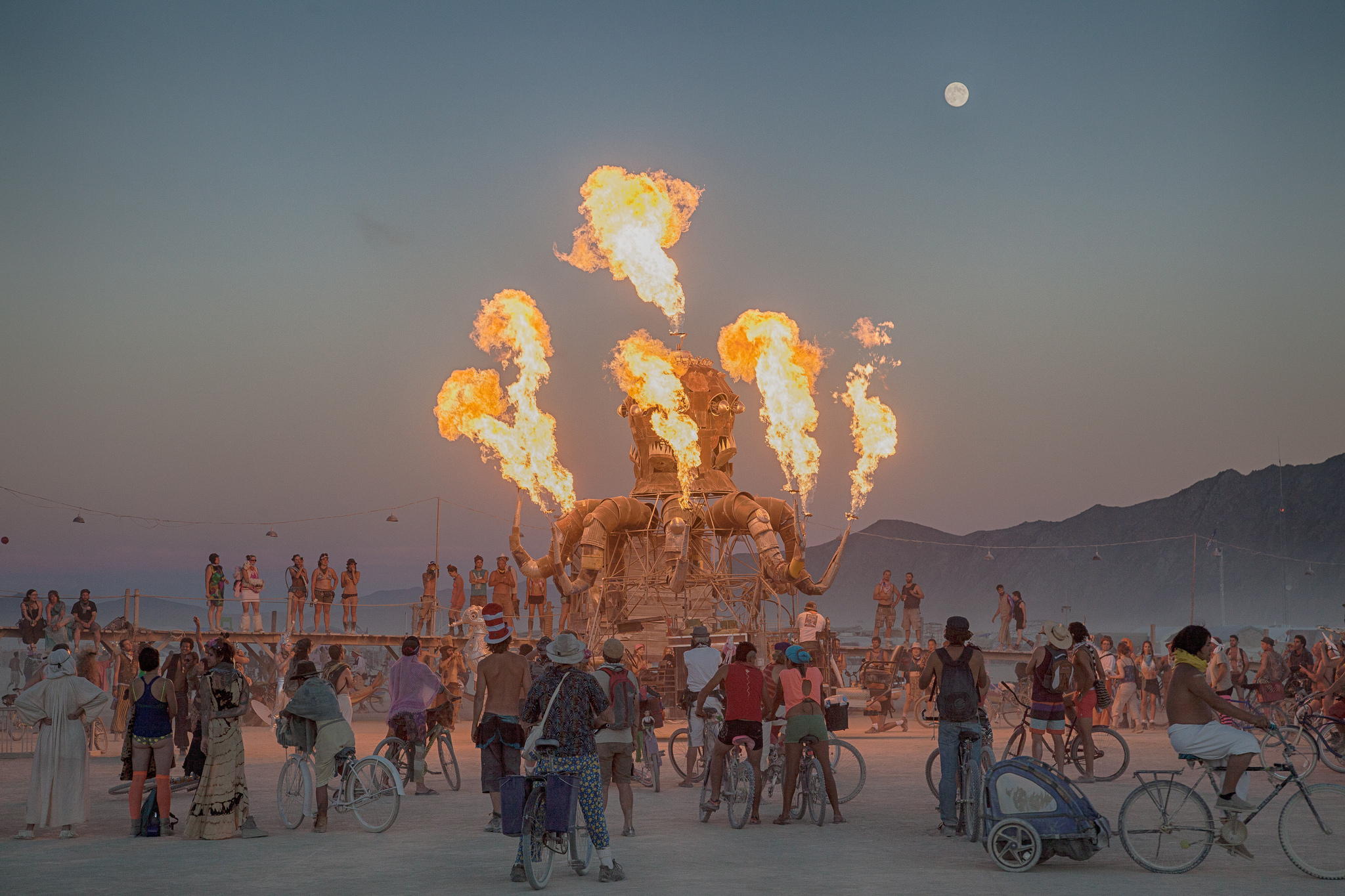 Image result for Burning Man Festival