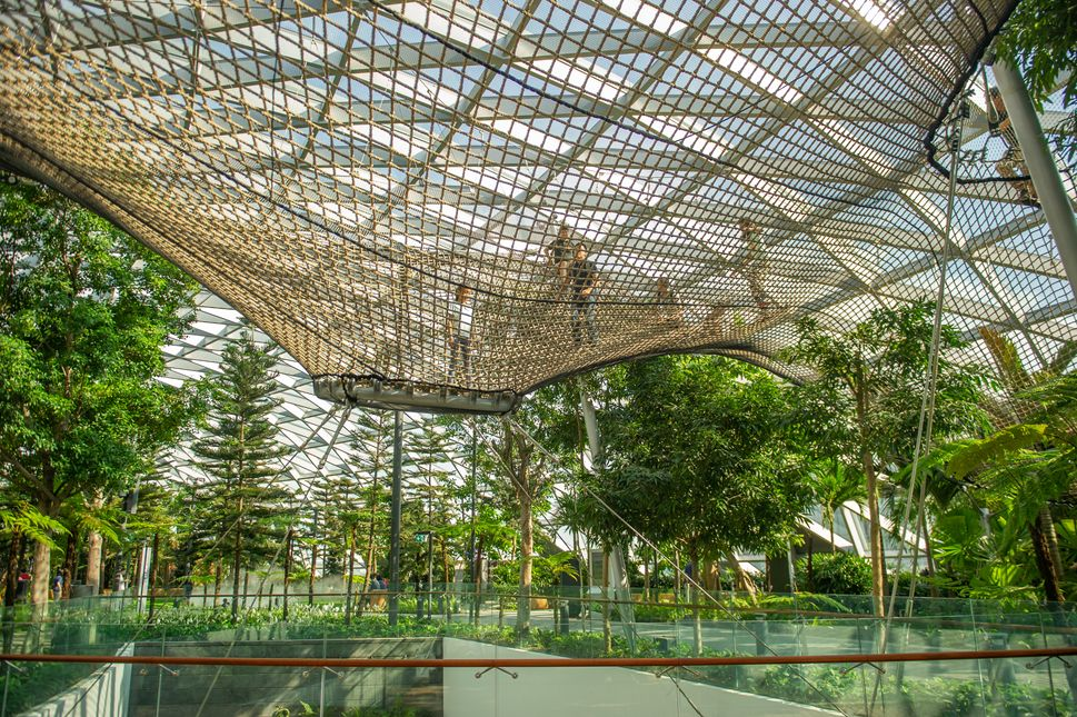 Canopy Park And Changi Experience Studio Is Now Open