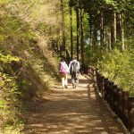 tokyo hiking