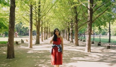day trip seoul