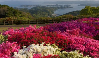 things to do in sasebo