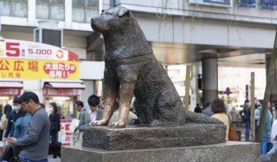 shibuya mayor