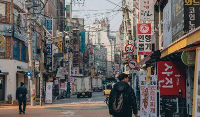 singapore south korea fast lane