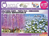 Apple Vacations Singapore (4H51)