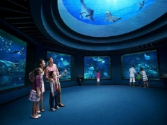 MasterCard® Exclusive - 15% off S.E.A. Aquarium Adult Pass at Resorts World Singapore