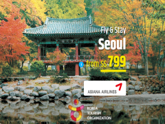 Fly and Stay in Seoul with CheapTickets from SGD799