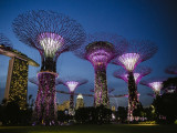 Enjoy 15% off Local Admission Rates to Gardens by the Bay with OCBC Cards
