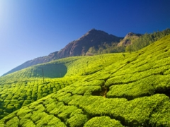 Discover India from SGD366 with Jet Airways