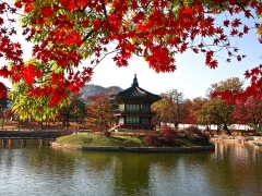 7 Days Sale: Fly to Seoul from SGD620 with Cathay Pacific