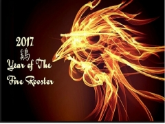 Fire Rooster Package from RM705 in Thistle Johor Bahru