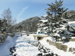 Korea: 6D4N Tour with Hotel and 5-Star Resort Stays with Meals & All Land Transfers