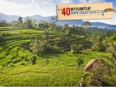 Bali: Seminyak Townhouse Stay