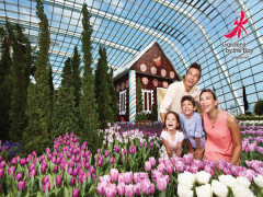 Get 10% off Admission Tickets to Gardens by the Bay with UOB Cards
