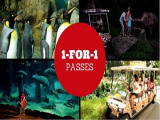 Enjoy 1-FOR-1 Passes to Wildlife Reserves Singapore Attractions with DBS Card
