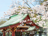 Fullfill your Japan & American Dream and Fly with All Nippon Airways from SGD660