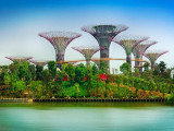 Enjoy 20% Off Admission Tickets in Gardens by the Bay with PAssion Silver Card