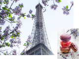 Spring Travel Sale to Europe on Finnair from SGD899