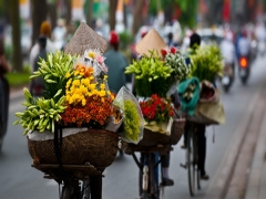 Special Airfares From Singapore to Vietnam from SGD70 on Vietnam Airlines