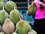Big Durian Deal Staycation from RM340 in Hotel Jen Penang