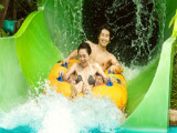 Adventure Cove Waterpark Adult One-Day Ticket + S$5 Meal Voucher at S$34 (U.P. S$43)