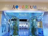 15% Off Admission Tickets in COEX Aquarium Seoul with Visa Cards