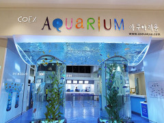 15% Off Admission Tickets in COEX Aquarium Seoul with Visa Cards