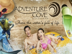 Summer Promotion | Adventure Cove Waterpark Buy 2 Get 1 Free at S$76*