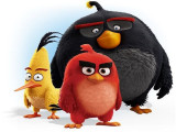 Play and Stay in Angry Birds Activity Park with Hotel Granada Package