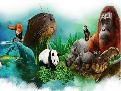 National Day Promotion: 52% Off 2-park Combo Tickets in River Safari & Singapore Zoo