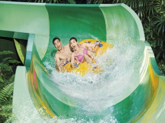 SGD52 for 2 Adventure Cove Waterpark Adult One-Day Tickets this National Day