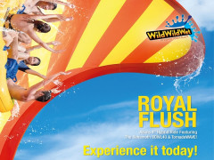 Enjoy Up to 15% Savings in Wild Wild Wet Admission with Plus! Card in D'Resort @ Downtown East