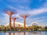 Joint Promotion with SAFRA-DBS & Hometeamns-Passion-Posb Credit & Debit Cards in Gardens by the Bay