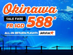 Fly from Singapore to Okinawa this year end at a discounted rate -  Return Flights from only S$588!