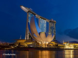 20% OFF Local Adult Tickets to ArtScience Museum with NTUC Promotion