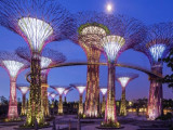 Enjoy 20% Savings on Gardens by the Bay Ticket with PAssion Card