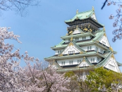 Discover Japan with Singapore Airlines from SGD658