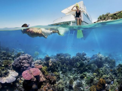 Explore Queensland through Brisbane or Cairns with Singapore Airlines