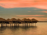 30 Days Advance Purchase in Avani Sepang Goldcoast Resort with 20% Discount