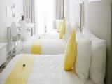 Enjoy 20% Savings in Lief Hotel with Visa Card