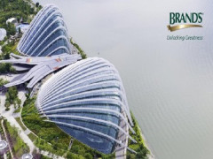 BRAND'S® NETS Flashpay Card Promotion in Gardens by the Bay with 25% Savings
