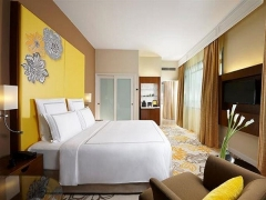 The Swiss Executive Experience in Swissotel Merchant Court with 20% Savings