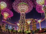 10% Savings for Local Residents with NTUC, PAssion, Safra and Home Team NS Card in Gardens by the Bay