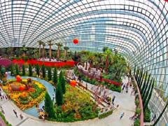 OCBC Credit and Debit Cards Promotion in Gardens by the Bay