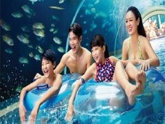 Enjoy Adventure Cove Waterpark from SGD34 with MasterCard