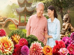 Chinese New Year Special for Conservatory Tickets in Gardens by the Bay