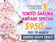 Tokyo Sakura Airfare Special