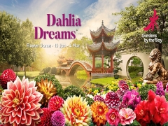 Dahlia Dream Floral Display at Gardens at the Bay at 10% Off with NTUC Card