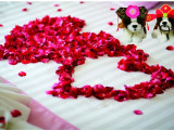 Chinese New Year Romance in Hotel Ciputra Jakarta with Hearty Meals for two!